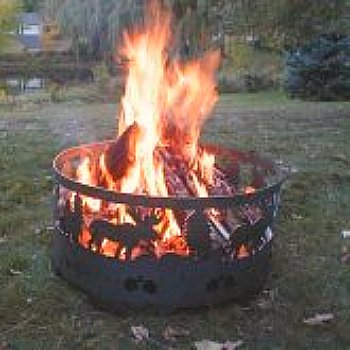 fire ring with moose