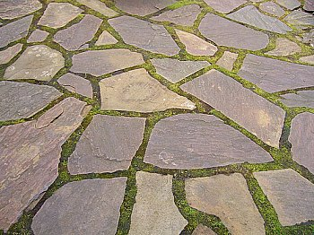 Flagstone with moss