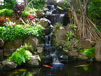 pond with koi and waterfall - Koi Pond Designs Ideas