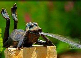 Bronze Frog Water Feature