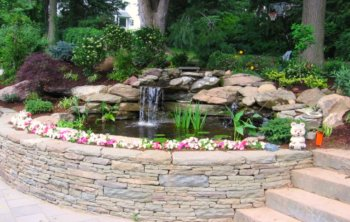 backyard pond - raised with stone